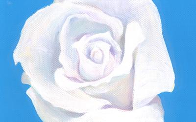 whiteroseeye